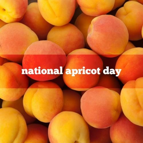 https://foodimentaryguy.files.wordpress.com/2016/01/apricot.jpg