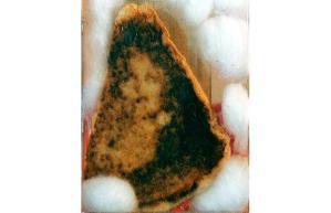 virgin-sandwich_1358431i