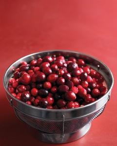 med103705_1108_cranberries_vert
