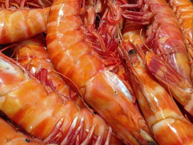 shrimp-1141476_1920
