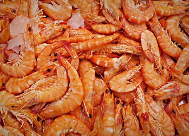 虾-15231351280